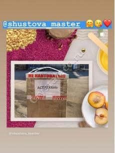 shustova_master